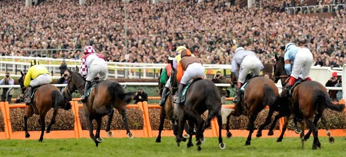 Cheltenham Starting Price Competition