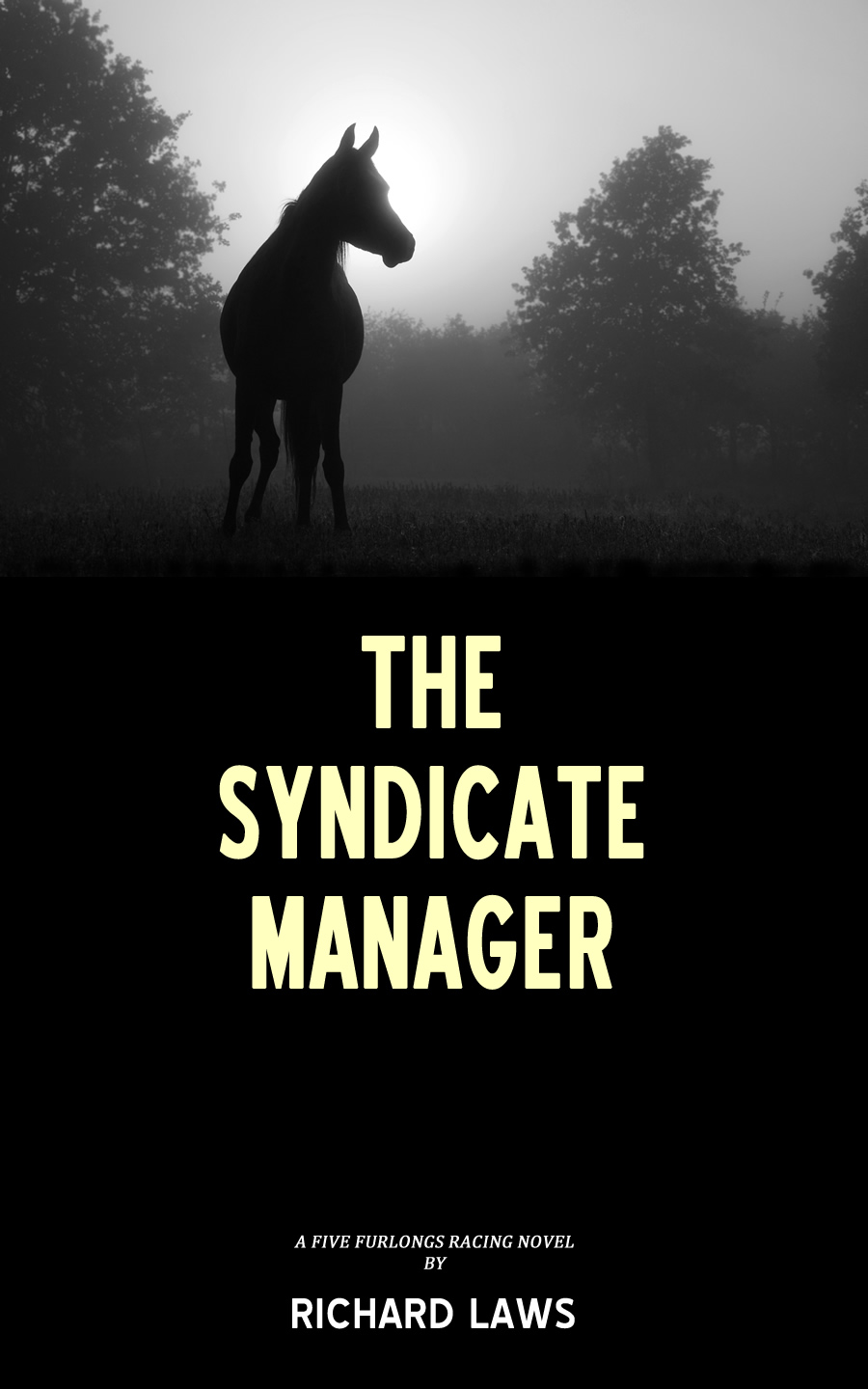 The Syndicate Manager Cover
